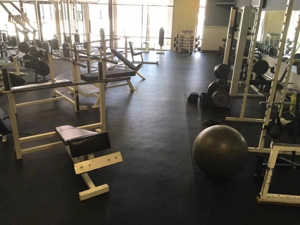 muscle max free weights leland